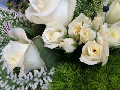 Image: Williams Florist